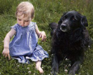 Tala med djur - Djurkommunikation