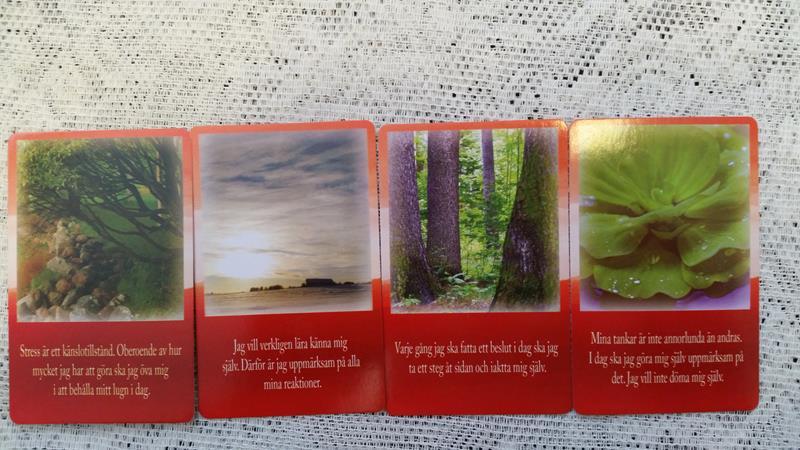 Inspirationskort för glädje och kraft_