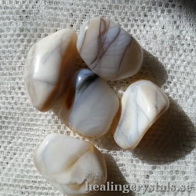vit opal