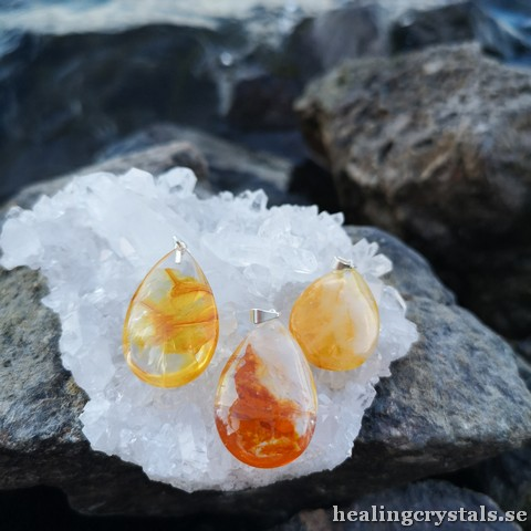 halsband golden healer