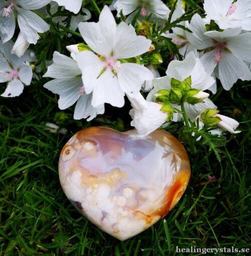 blomster agat flower agat