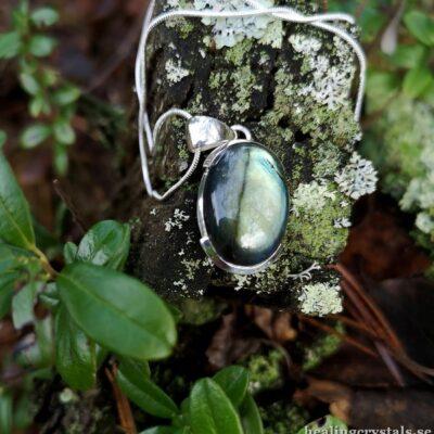 silver halsband labradorit