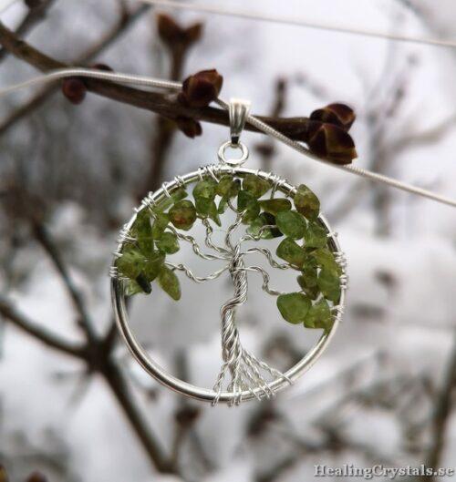 livets träd peridot