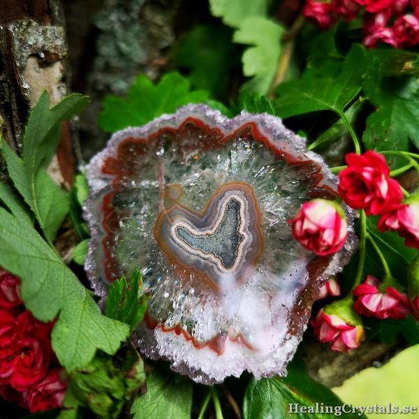 ametist stalaktit blomma