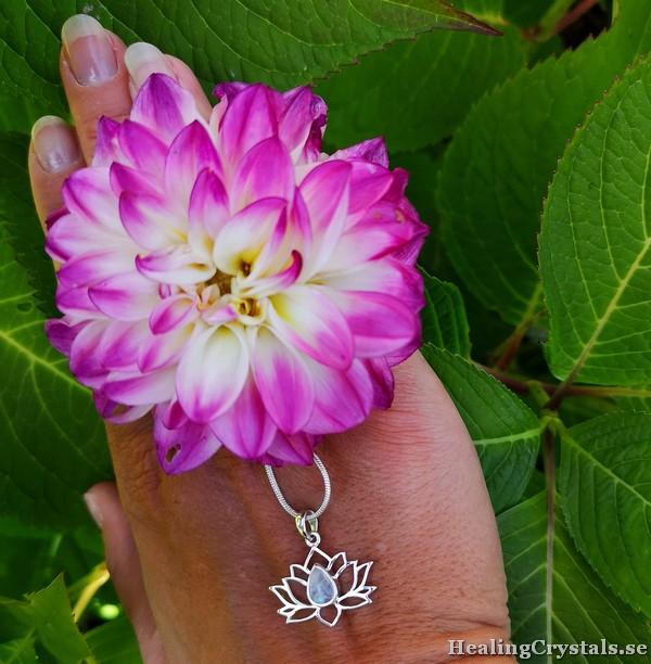 lotusblomma silverhänge månsten